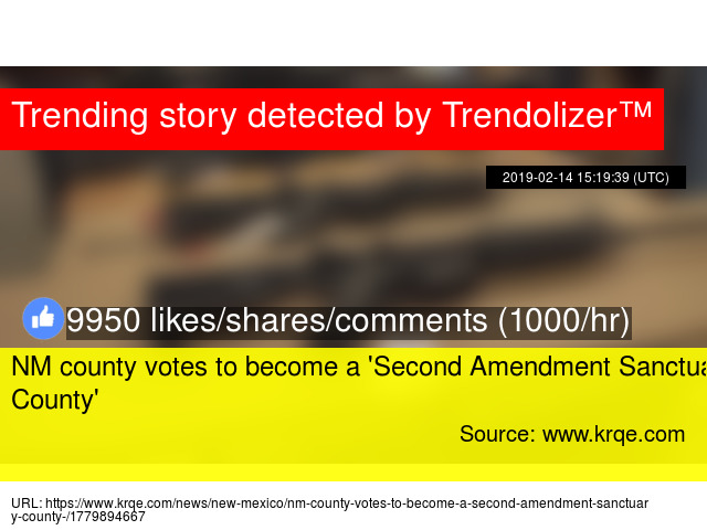 NM county votes to become a 'Second Amendment Sanctuary County'